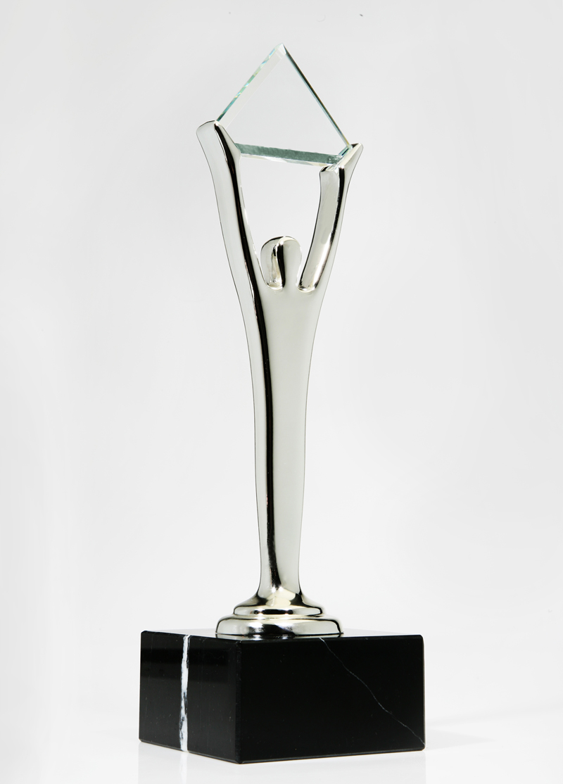 Photo of the Silver Stevie Award